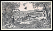 Toll Gate No. 4 Shoo! Fly!, Trade Card
