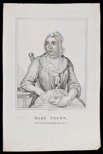 Mary Tofts, The Pretended Rabbit Breeder