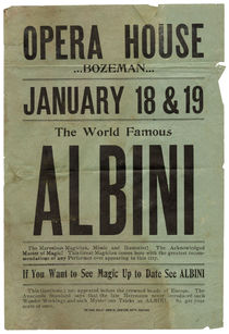 The World Famous Albini Flyer