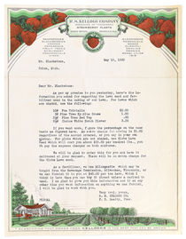 R. M. Kellogg Company Typed Letter to Harry Blackstone