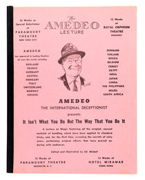 The Amedeo Lecture