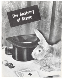 The Anatomy of Magic with ALS